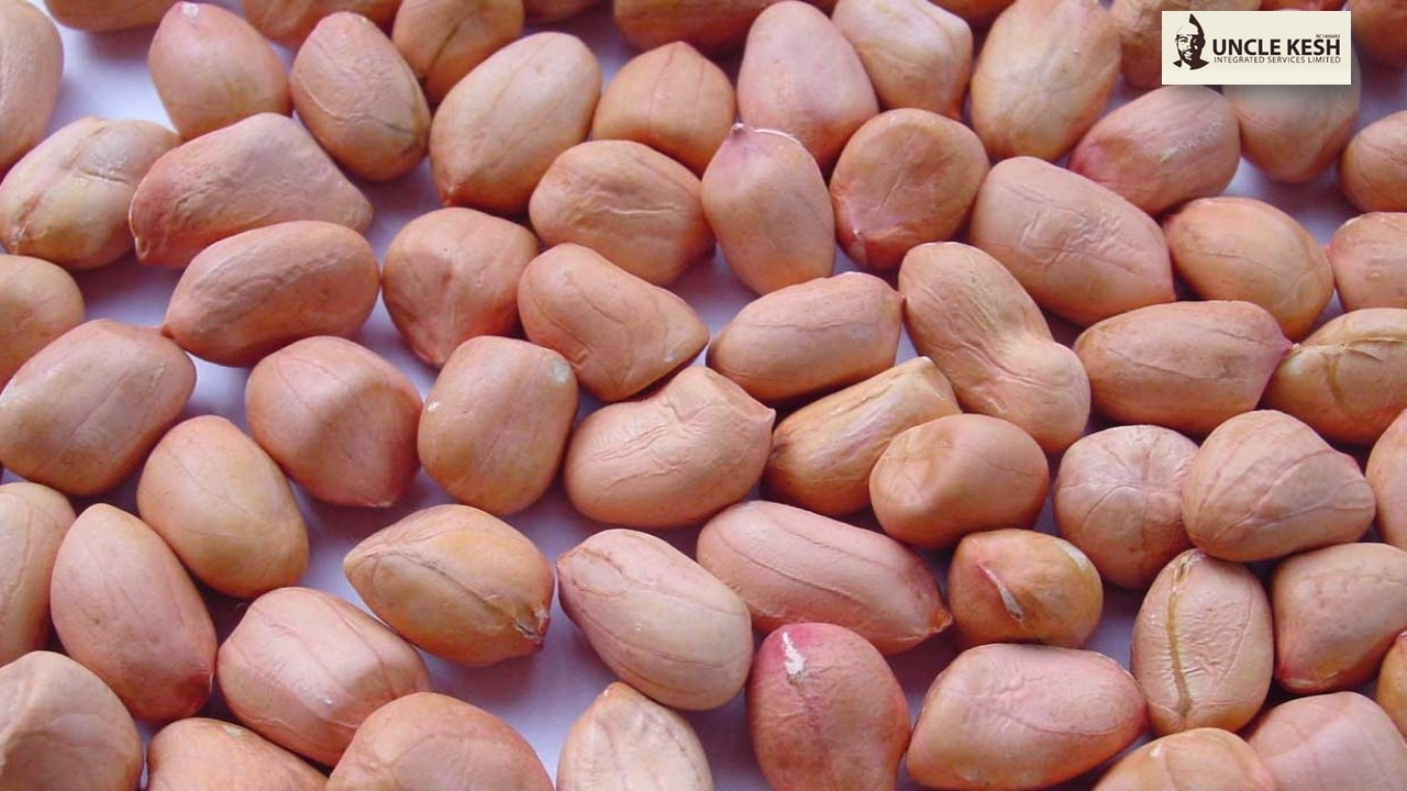 Groundnut - Uncle Kesh Integrated Services Limited